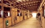 Barn Aisle Best