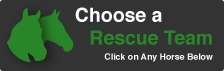 chooseRescueTeam_HorsePage