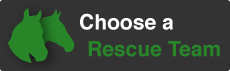 chooseRescueTeam_JoinPage