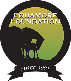 Equamore Foundation